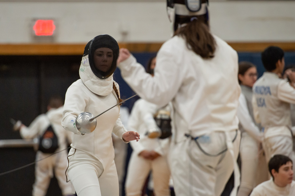 Fifth fencing image