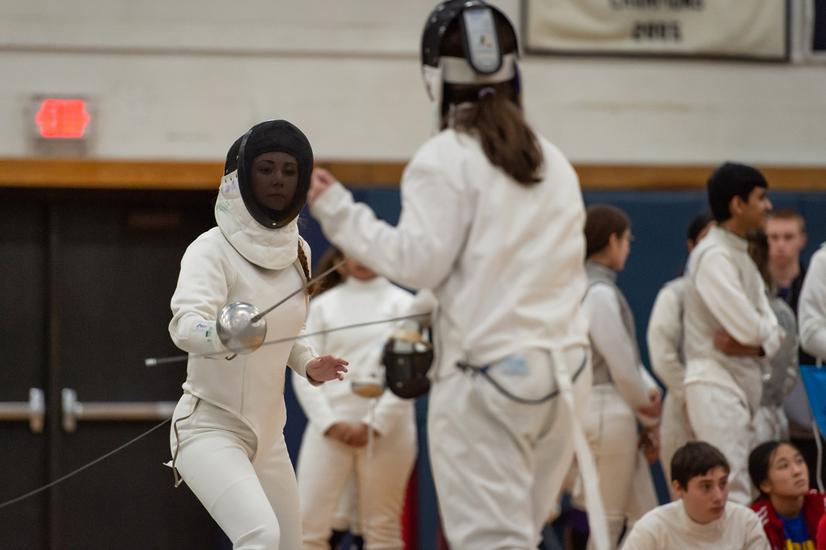 Seventh fencing image
