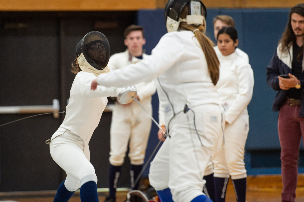 15th fencing image