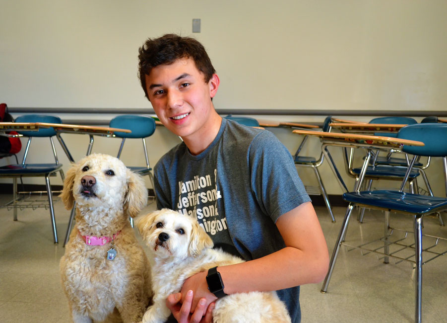 Huntington sophomore Aaron Chin with a pair of specially trained therapy dogs at Nassau Community College.